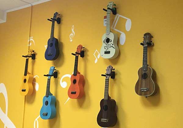 Выбор гавайской гитары
