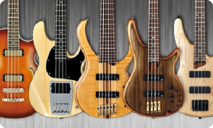 Виды бас гитар
