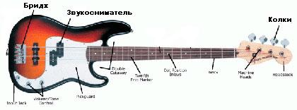Виды звукоснимателей для бас гитары